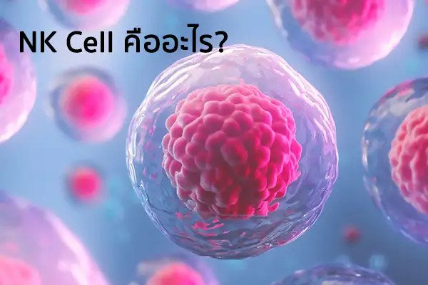 IMMUNE SYSTEM & NK CELL